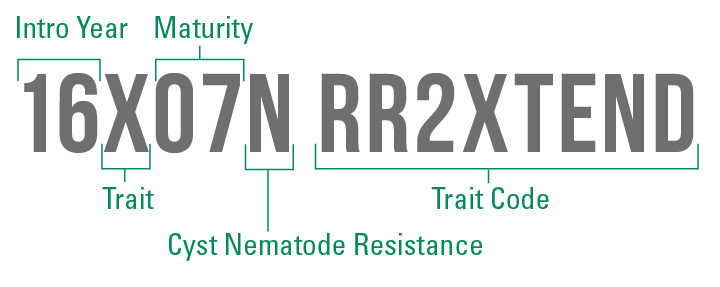 RR2Xtend trait package key