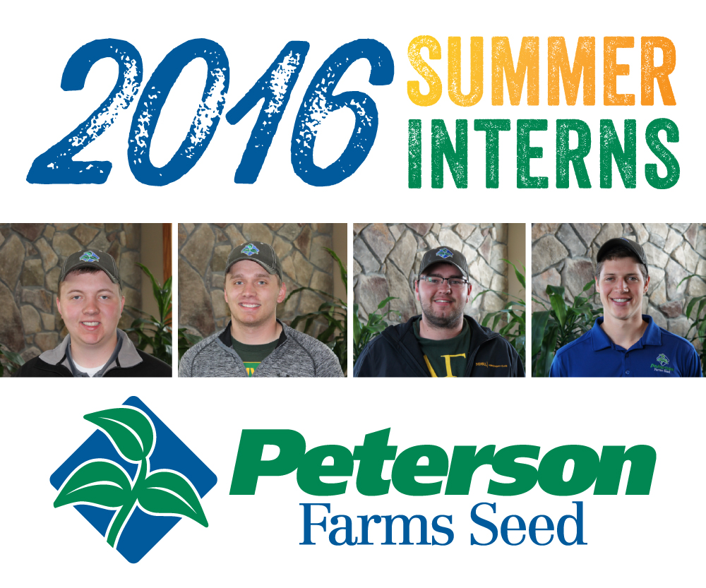 just a summer job it is so much more than that peterson farms seed just a summer job it is so much more than that