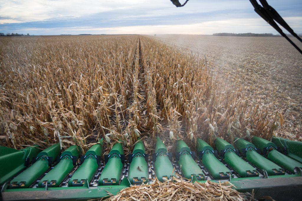 20161015_pfs-corn-harvest_0015