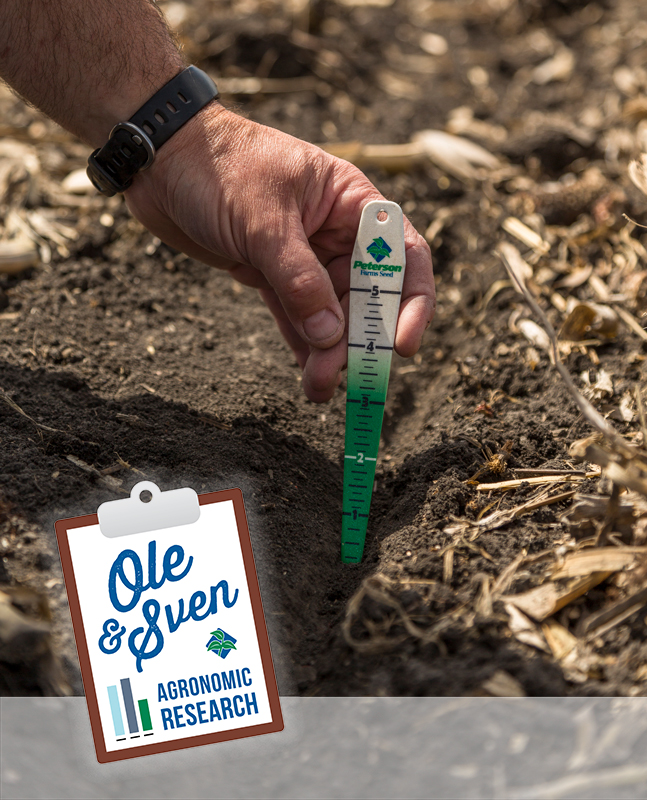 Planting Depth - Corn